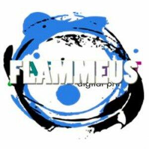 Verkeersschool Flammeus logo