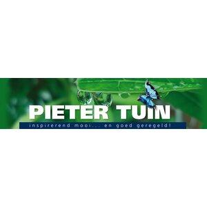 Pieter Tuin logo