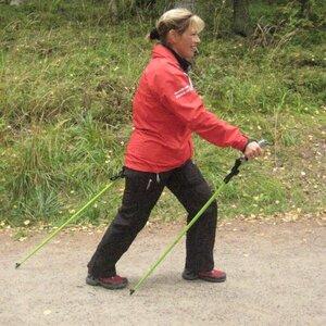 Nordic Walking Pro image 1