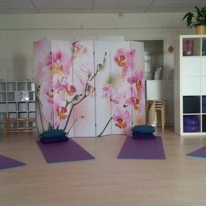 Dru Yoga Heerhugowaard image 3