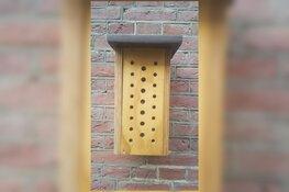 Bijenhotels voor scholen in Purmerend