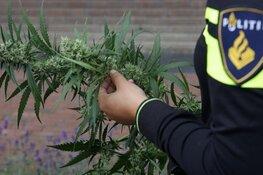 Burgemeester sluit drugspand aan Cantekoogweg