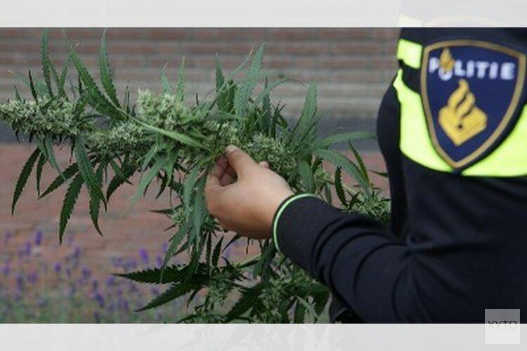 Politie Purmerend ruimt verstopte hennepplantage